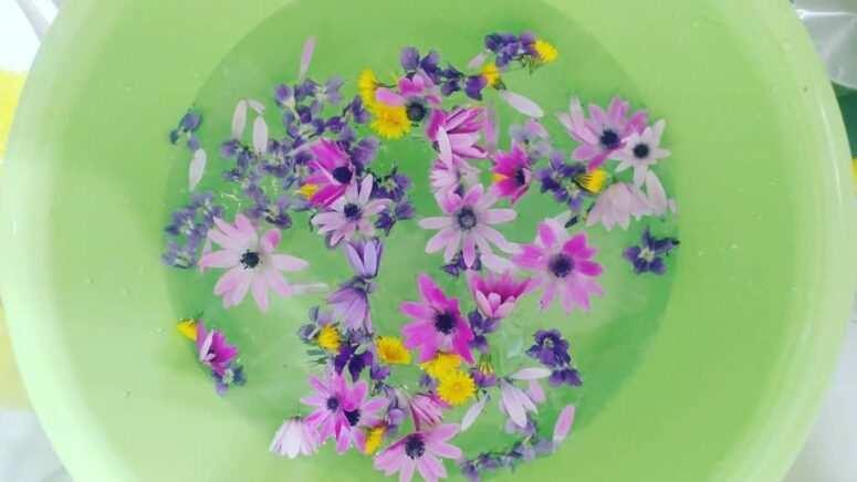 Običaj umivanja cvijećem